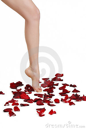 A girl steps on the petals of roses