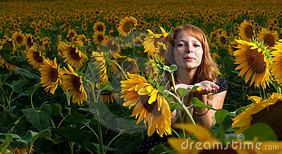 Girl in sunflowers