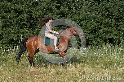 Girl trot a horse