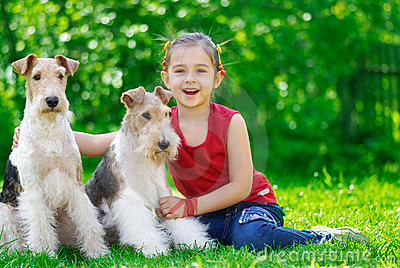 The girl and two fox terriers