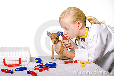 Girl Veterinarian Checking Puppy Dog s Ears