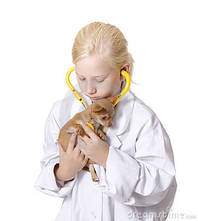 Girl Veterinarian with Puppy Using Stethoscope