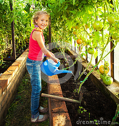 Free Girl Watering The Garden Stock Photo - 56050970