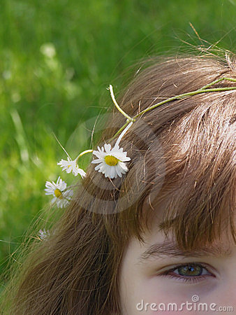 Free Girl With Daisy Flowers Royalty Free Stock Photos - 5471778