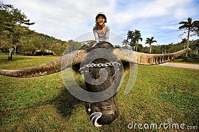 Girl on yak