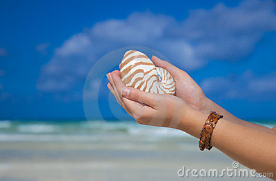 Girls hands holding nautilus shell against sea