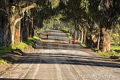 Girls jogging at a country road