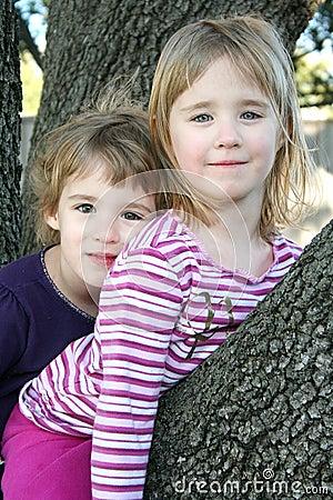 Girls Sitting in a Tree
