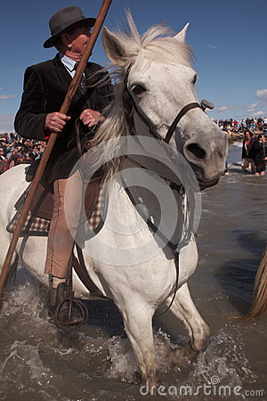 Gitan Pilgrimage, Camargue Editorial Photo