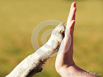 Give me five (2)