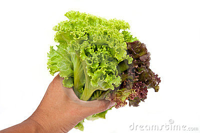 Give salad