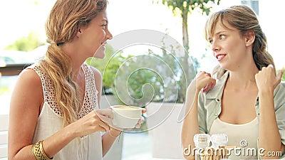 Glückliche blonde Freunde, die Kaffee und das Plaudern trinken stock video