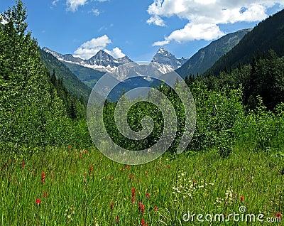 Glacier Park vista, Canada