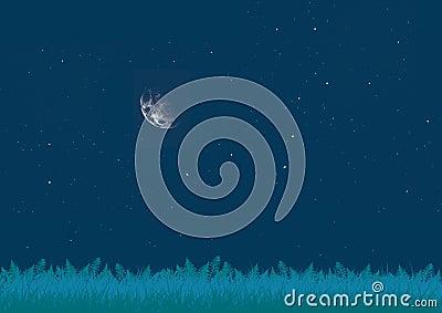 Glade at night