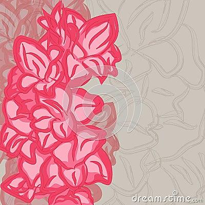Gladiolus blossom floral background