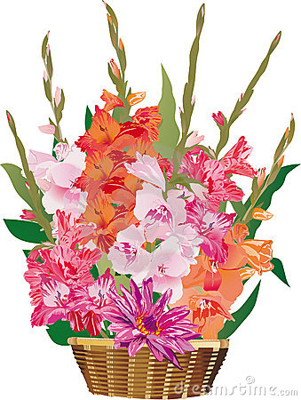 Gladiolus flowers in basket