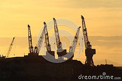 Glasgow cranes
