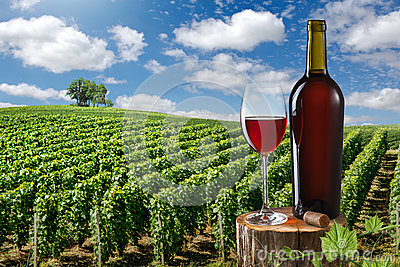 Glass and bottle of red wine against vineyard landscape