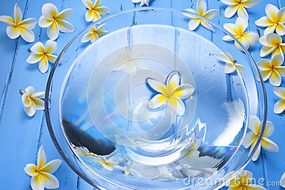 Spa Flowers Water Bowl Background