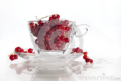 Glass cup with wet red currant