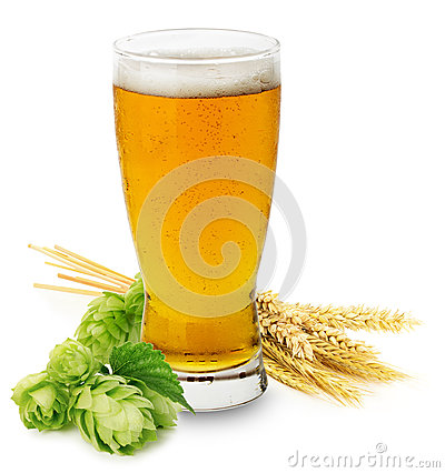 Free Glass Of Fresh Beer With Green Hops And Ears Of Barley Isolated Royalty Free Stock Photo - 44080665