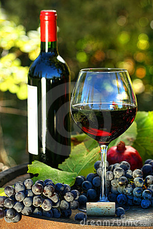 Free Glass Of Red Wine With Bottle And Grapes Royalty Free Stock Photo - 10608725