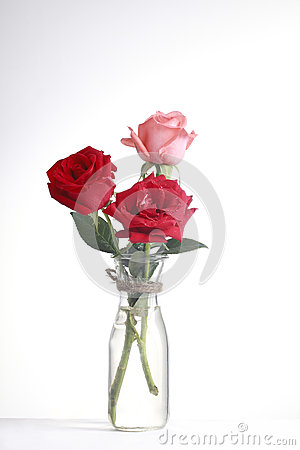 Glass and rose3