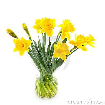 Free Glass Vase With Daffodils Royalty Free Stock Photo - 8186805