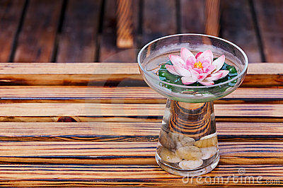 Glass Of  water  and  flower
