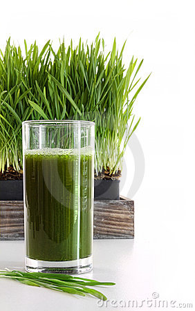 Glass of wheatgrass on white