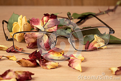 Glasses And Dry Rose With Petals Close Up Royalty Free Stock Photography - Image: 26005717