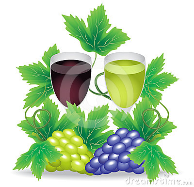 Glasses of red and white wine grapes on the backgr