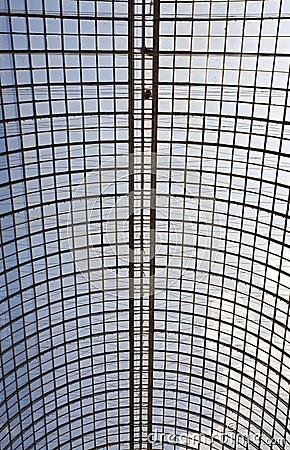 Glassy roof