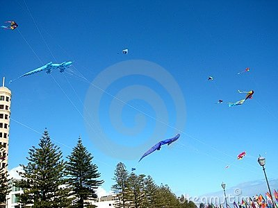 Glenelg Kite Record