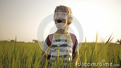 Glimlachend kind in het groene gras van padieveld op manierhuis van school stock video