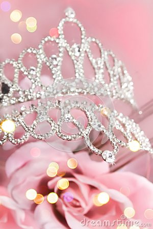 Glitter Crown With Pink Roses Stock Photo Image 43521568