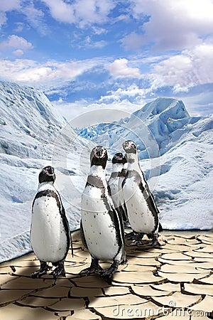 Free Global Warming Royalty Free Stock Photo - 4828505