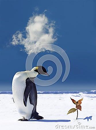 Global Warming In Antarctica