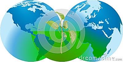 Globalna konserwaci natura