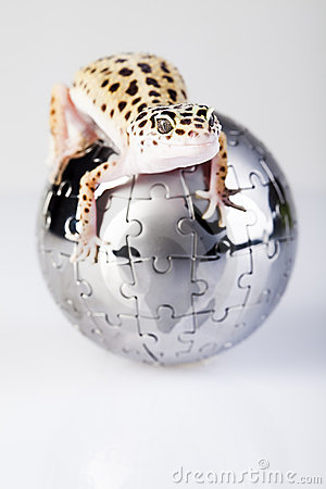 Globe in gecko
