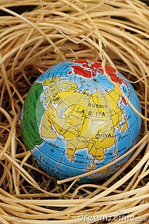 Globe in a nest