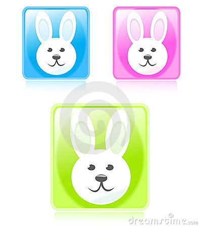 Glossy bunny buttons