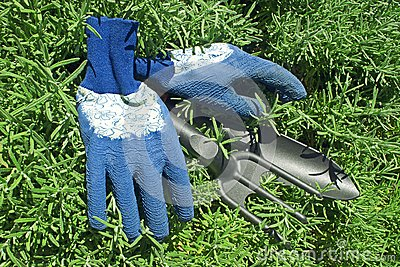 Gloves and Garden Shovel and rake