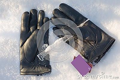 Gloves man s.