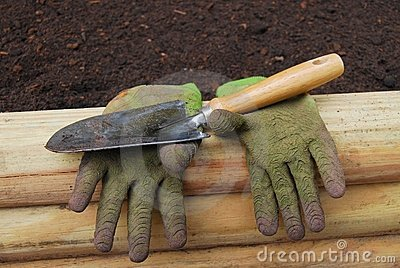 Gloves and Shovel
