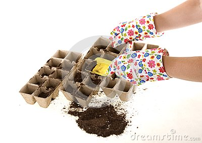 Gloves with Shovel Placing Soil into Compost Pots