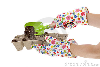 Gloves, Shovel Placing Soil into Compost Pots