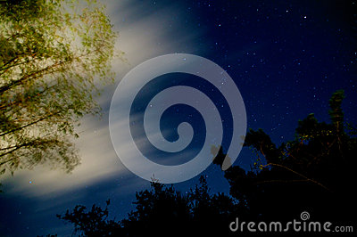 Glowing bamboo night sky with clouds and stars