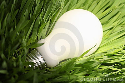 Glowing energy saving lightbulb on green grass