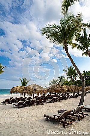 Gömma i handflatan och den tropiska stranden i tropiskt paradis. Sommartid som är holyday i Dominikanska republiken, Seychellerna